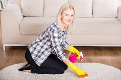 Magical Rug Cleaning Services in SW14